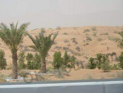 по дороге в Дубай из Фуджейры