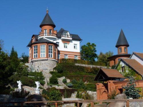 село Буки - фото поместья Суслова
